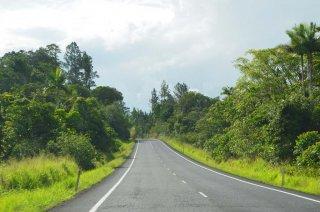 Grünes Queensland