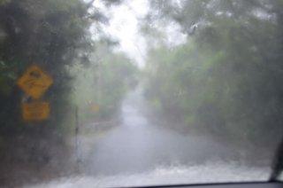 Monsoonregen