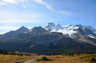 Aussicht vom Wilcox Pass Trail