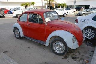 Einer von vielen VW Käfern