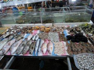 Fisch wo man nur schaut
