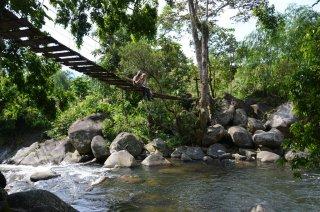 Monkey-Bridge mit Affen :-)