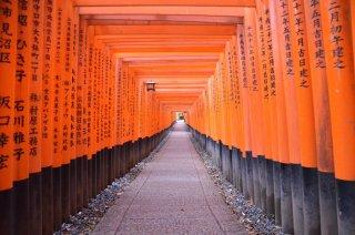 Fushini Inari Torii