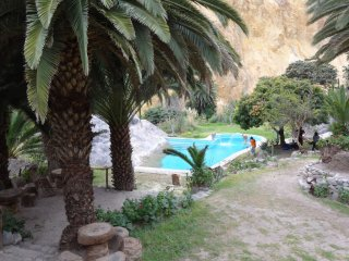 Der Pool bei der Oase