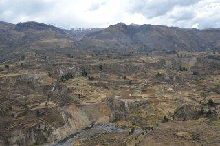 Landschaft mit Reisterrassen