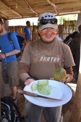 Die saure Kaktus Frucht
