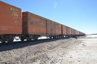 Der Zug auf den Weg nach Chile