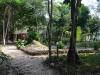 Der Weg zum Treehouse Bungalow