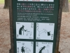 Regeln im Umgang zu den Bambies