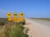 Tierwarnschild auf der Nullarbor Plain