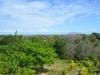 Aussicht auf dem Hügel bei Ojo de Agua