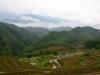 Reisfelder von Sapa
