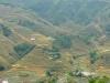 Wanderung durch die Reisfelder in Sapa