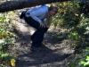 Hindernisparcours zu den Wapta Falls