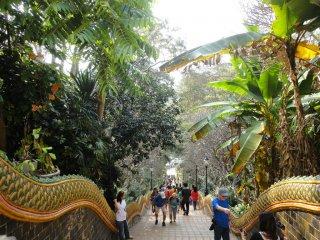 Trepp hoch zum Wat Phra That Lampang Luang