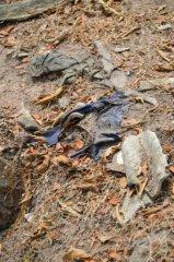 Kleiderresten, welche aus dem Boden ragen