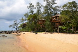 Die Treehouse Bungalows